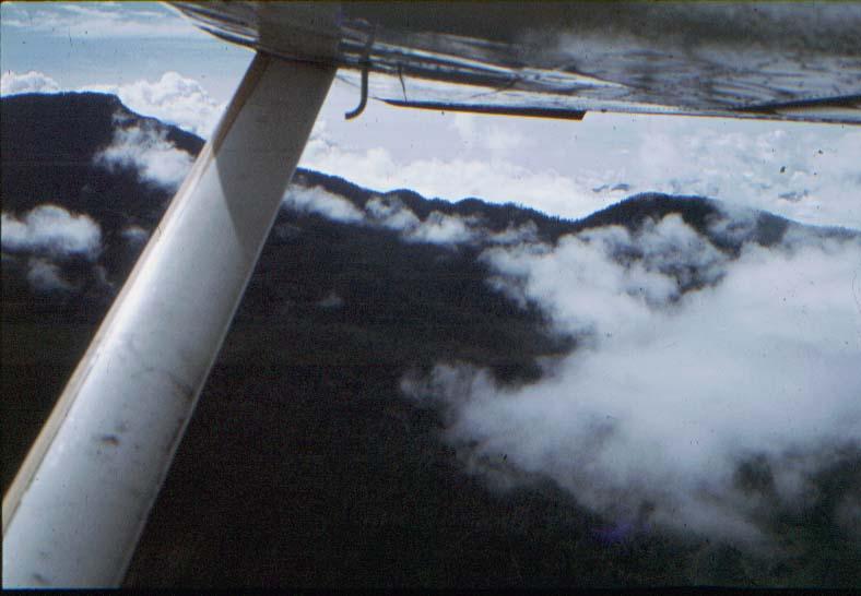 BD/37/22 - Bush-vliegen tussen de bergen