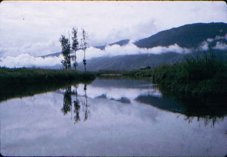 BD/37/64 - De Kugapa-rivier vanaf de grond gezien.