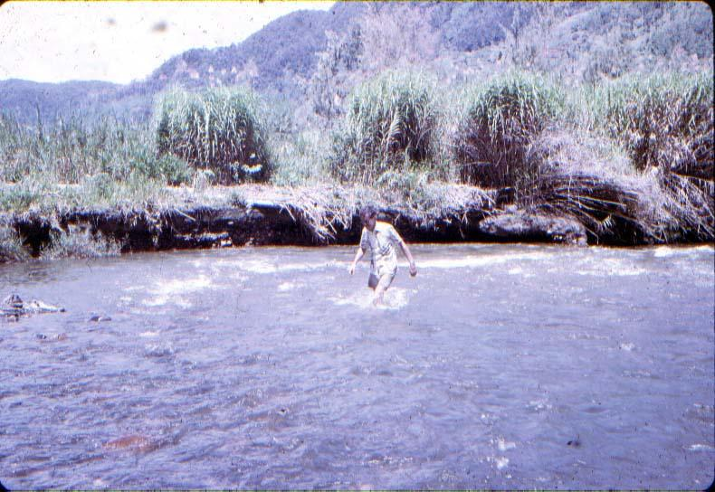 BD/37/308 - Bilorai: Broeder Kasimir Kuijpers ofm