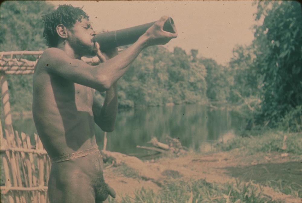 BD/30/43 - Asmat man next to a river blowing a horn